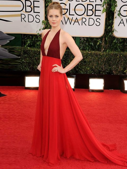 Amy Adams wears Valentino to the 71st Annual Golden Globe Awards, 2014.