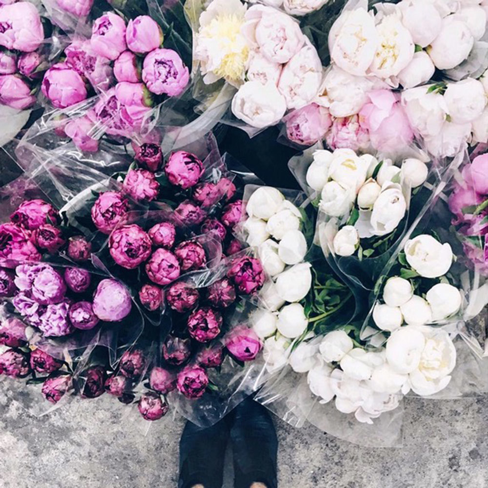 Peonies Are The New Avocado You Heard It Here First