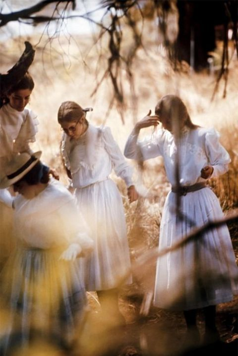 essay on picnic at hanging rock
